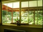 Windows everywhere, looking out to the Ferns, Ginger, and Ohia Trees