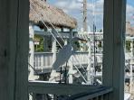 Great Egret at Key Largo harbor