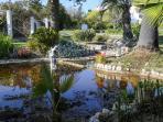 Pond outside Casa Jardim