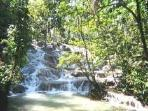 Visit and Climb Dunns River Falls