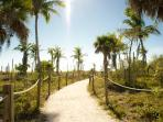 Sandy path to the beach through native Florida vegetation. Feels like Gilligan's island.