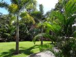 A delightful tropical garden to enjoy