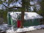 Tree,Building,Cottage,Dog House,Yard