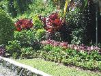 EUROPA FAMILY CONDO, SOME OF BAGUIO'S BEST GARDENS