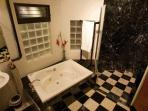 Master Bathroom with Jacuzzi tub and walk in marble shower