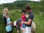 Horse riding for  all ages