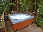Redwood Rendezvous, Hot Tub, Spa Wine Country Rental