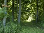 wooded trails