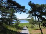 Hiking Trail at Great Island in Wellfleet - 8 miles from the house