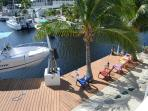 Watch the manatees play from the upstairs balcony!