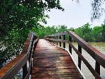 The little bridge that spans Clam Bayou is a great perch for birdwatching or fishing!