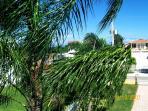 Palms Swaying at Villa Casa Maria