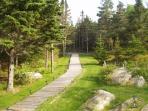Boardwalk to driveway