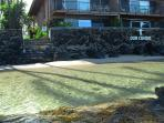 Steps from the condo is ocean fun. Great snorkeling, tide pool exploring & calm waters for swimming.