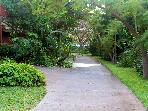 tropical walkways back to units