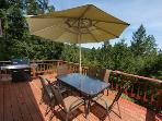 Hummingbird House, Outdoor Dining, Gas BBQ