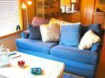 Comfy Sleeper Sofa
