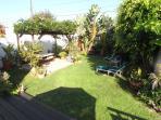 Backyard, Fruit trees