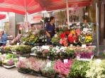 the flower market in front of the building
