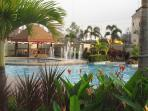 Gardens surrounding swimming pool