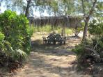 Palm Shaded Picnic Area