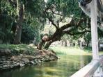 Mount Dora Canal