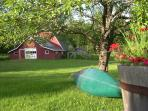 Summer afternoon, kayak under the pear tree
