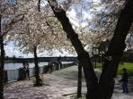 Riverfront Esplanade