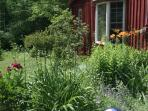 July at Cavalier Cottage