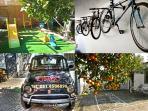 Playground and Bikes