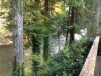Another deck view of Sol Duc River
