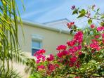 Grace Bay Townhomes - A peak through the bouganvilla!