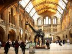 Natural History Museum where dinosaurs roam!
