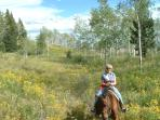 Horseback riding in the meadow