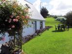 Laurel Lodge garden