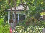 Palm Cottage through the tropical gardens