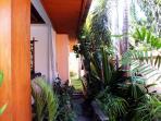 Tropical Garden Area!