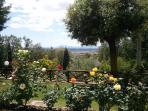 giardino e roseto
