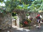 The St George Botanical Gardens are set among the ruins of an old sugar plantation.  Beautiful!
