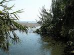 Gold River Marina di Cottone