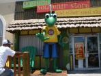 Visit Senior Frogs