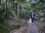 Nearby typical NZ. bush walks
