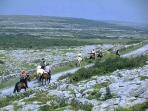 The. Burren