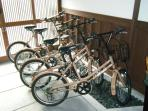 Bicycles for the guests