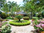 Casa Garden : jardin Tropical