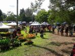 Bellingen Markets 3rd Sat of each month - just 5 minute walk