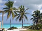 Great Exuma Island beach and palm trees
