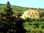 Olive Villas complex