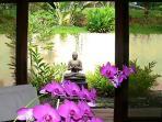 Buddha adds a serene ambiance