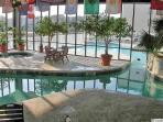 Indoor/Outdoor Pool with Jucuzzi
